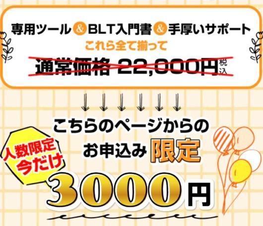 BLT(Business Like Time)は3000円必要